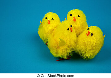 Four Easter chicks on blue background - Four yellow Easter...