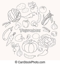 Vector collection of vegetables