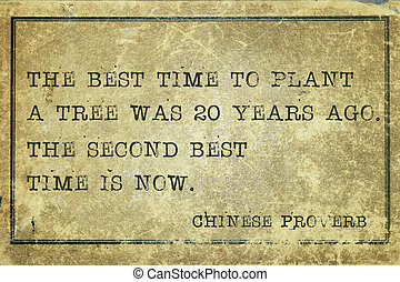 best time Proverb - The best time to plant a tree was 20...