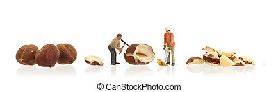 Miniature worker working with hazelnuts - Concept of food...