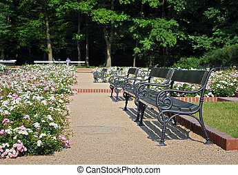 Lazienki Park in Warsaw, Poland