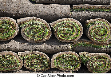 Sod Background - Green Grass Sod Background