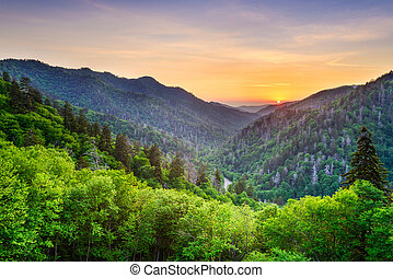Newfound Gap in the Smoky Mountains, Tennessee, USA