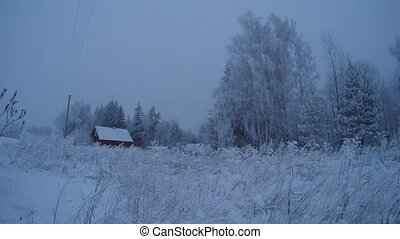 Trees covered with hoarfrost in the homestead with a red...