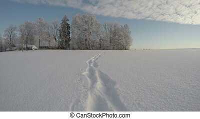 Feet tracks on midwinter  snow