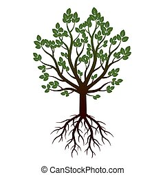 Green Tree and Roots. Illustration.