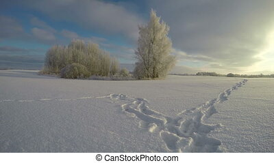 feet trail through snowy field - Farmland landscape with...