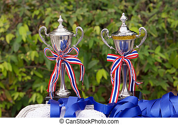 Trophy cup - Award winning of trophy cup on playing field...