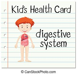 Health card with digestive system illustration