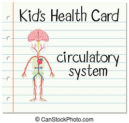 Health card with circulatory system illustration