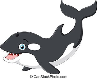 Cute killer whale cartoon