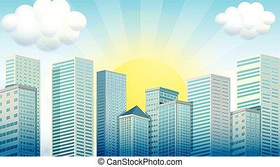 Sky scrapers in the city
