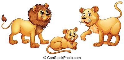 Lion family with cute little cub