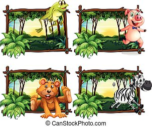 Four frames of wild animals in the jungle