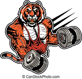 tiger weightlifter - muscular tiger weightlifter mascot for...