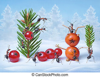 ants make Christmas tree and Santa Claus for New Year, ant...