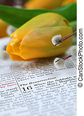 Resurrection - Open Bible with selective focus on the text...