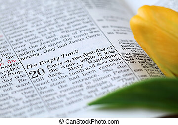 Empty tomb - Open Bible with selective focus on the text in...