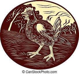 Hen Farm Oval Woodcut