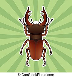 Insect anatomy. Sticker stag-beetle. Lucanus cervus. Sketch of stag-beetle. stag-beetle Design for coloring book. hand-drawn stag-beetle. Vector