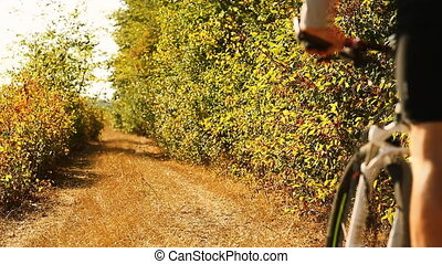 Mountain biker riding on bike in the forest. Man cycling MTB...