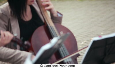 string ensemble. girl playing the cello outdoors