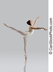 Beautiful ballet - Professional female ballet dancer...