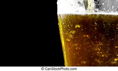 pouring fresh beer with foam into glass on black background,...