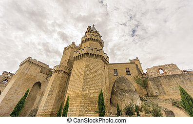 Olite Castle with cloudy sky in Navarra, Spain - Wide angle...