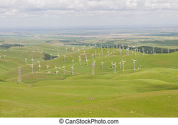 Wind farm on an overcast day, Livermore, California