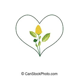 Yellow Paracress Flowers in A Heart Shape - Love Concept,...