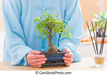 Hands with bonsai tree