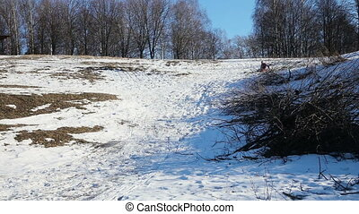 Little girl sledging down hill
