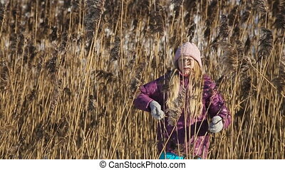 Little girl picking up reeds - young girl collects reeds on...