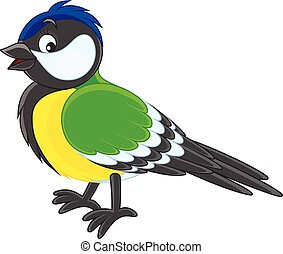 Tomtit - Vector illustration of a titmouse, on a white...