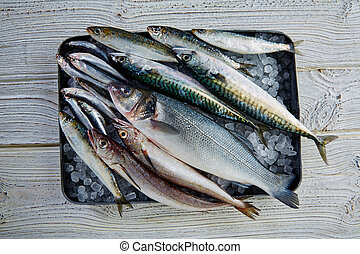 Fresh fish hake seabass sardine mackerel anchovies - Fresh...