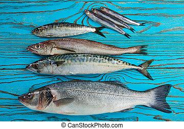 Fresh fish hake seabass sardine mackerel anchovies - Fresh...