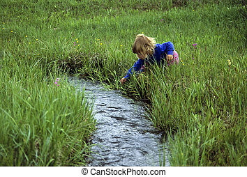Young girl by a babbling brook - Little girl reaching into a...