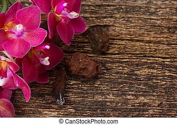 Bunch of violet orchids - Fresh pink orchid flowers close up...