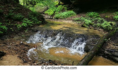 Woodland Stream Loop - A woodland stream cascades over a...