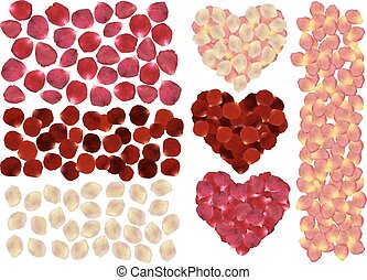 Rose petals set - Illustration of rose petals in various...