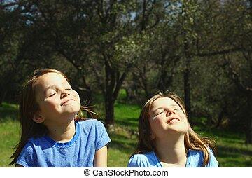 二, 女孩, 享用, 陽光