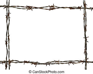 frame made of barbed wire on the white background