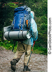 tourist goes through the woods - male hiker walking through...