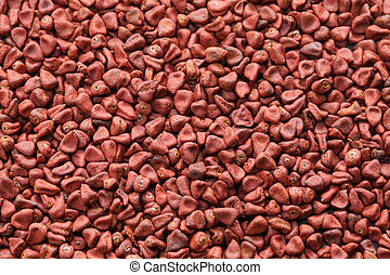 Graines,  achiote, Graines,  annatto