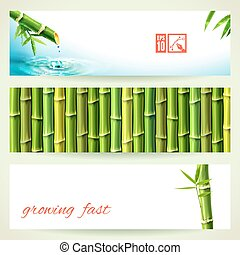 Set of Horizontal Bamboo Banners. Vector illustration, eps10, editable.