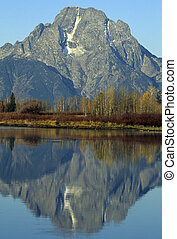 Mt. Moran morning, Teton National Park - Autumn morning, Mt....