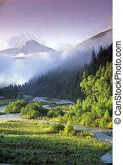 Rocky Mountain spring - Mountain, river, spring, trees,...