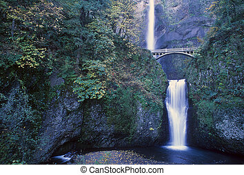 Multnomah Falls, Columbia Gorge, Oregon - Two waterfalls,...