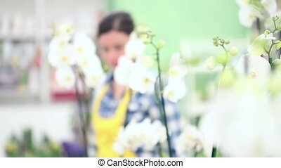 florist woman walking in the garden of flowers, gets up and...